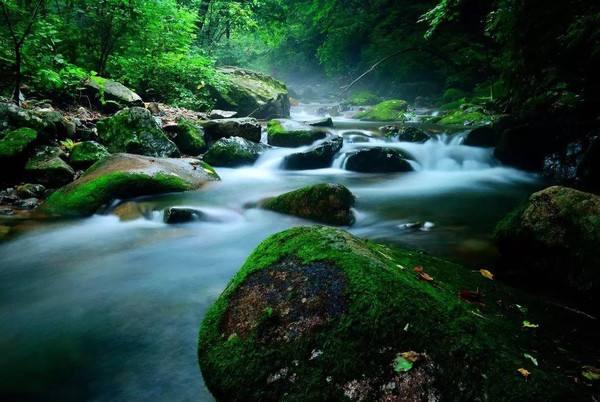 绿石谷一日游